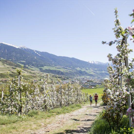 Brixen Natur